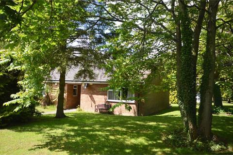 1 bedroom semi-detached bungalow for sale - Gorringe Avenue, South Darenth