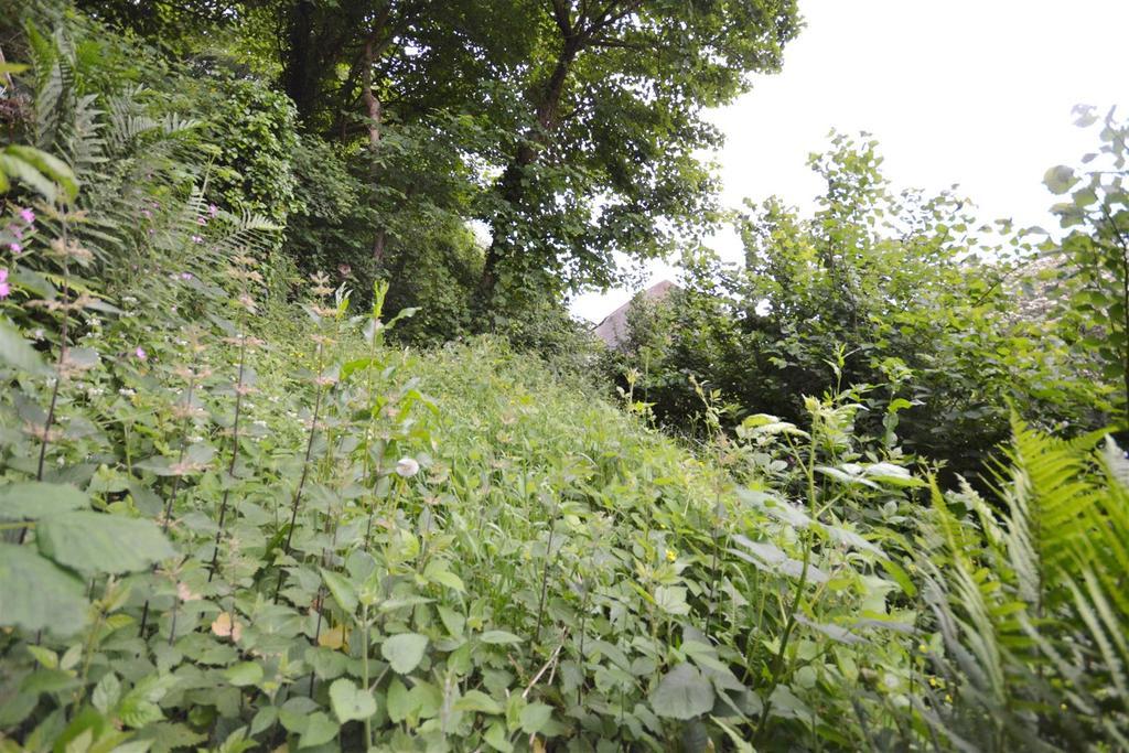 16 garden.jpg