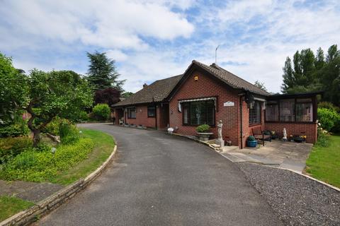 3 bedroom detached bungalow for sale - Ipswich Road, Newton Flotman