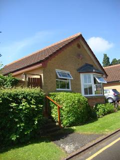 2 bedroom bungalow to rent - Brooksby Grove, Dorridge, Solihull, B93 8BW