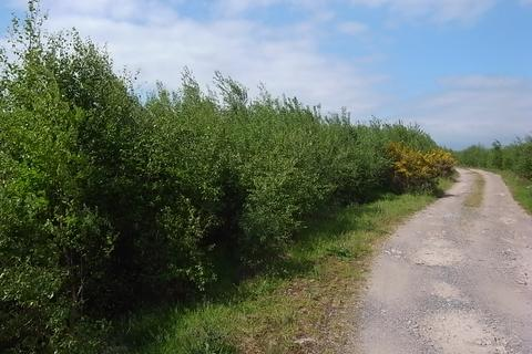 Land for sale - Brasswell, Dumfries DG1 9PH