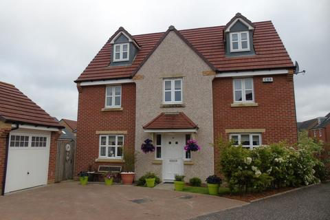 5 bedroom detached house for sale - Ewart Drive, Cairnhill, Airdrie, North Lanarkshire, ML6