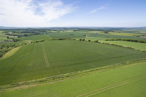 Farm for sale - Land At Whitelaw, Haddington, East Lothian, EH41