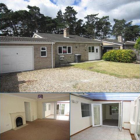4 bedroom detached bungalow to rent - Firs Way, Brandon
