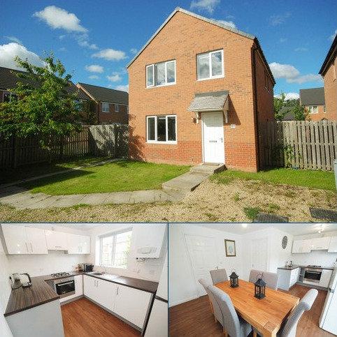 4 bedroom detached house for sale - Beech Street, Jarrow