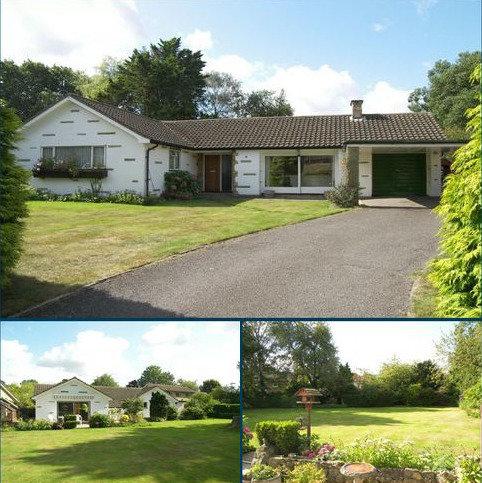 3 bedroom detached bungalow for sale - East Horsley