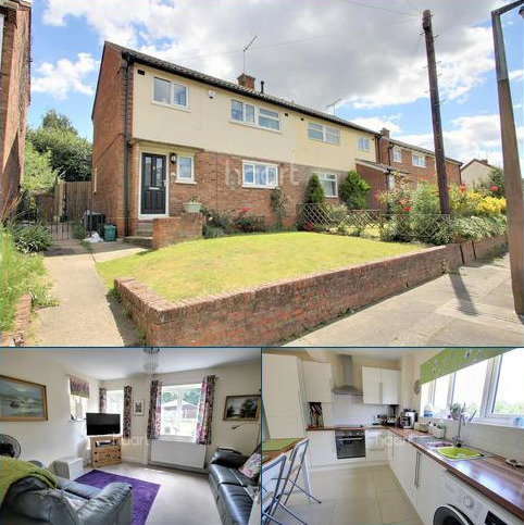 3 bedroom semi-detached house for sale - Lime Avenue, Colchester