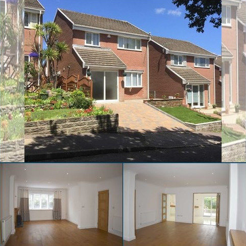 3 bedroom detached house for sale - Woodburn Drive, West Cross, Swansea