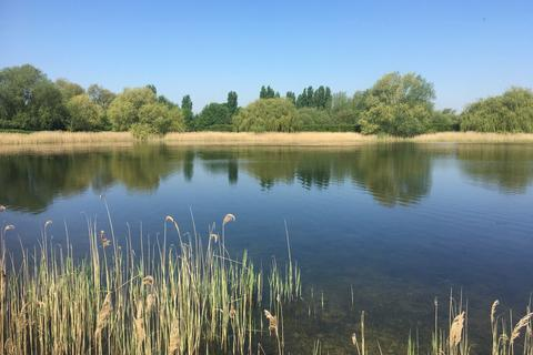 Land for sale - North Bank, Whittlesey