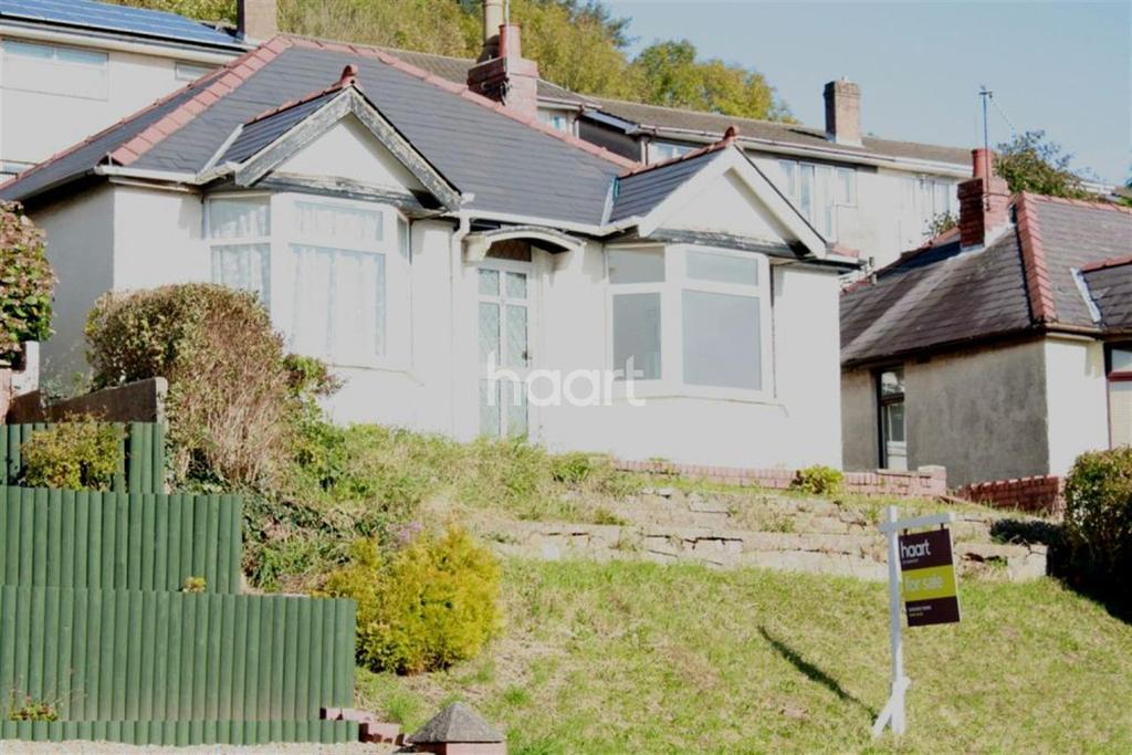 2 Bedrooms Bungalow for sale in Chepstow Road, Newport