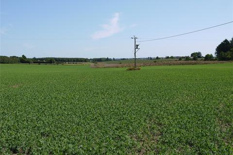 Land for sale - Land At Pinegrove, Forfar, Angus, DD8