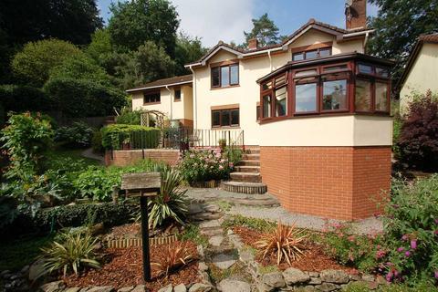 3 bedroom detached house for sale - UPPER LYDBROOK
