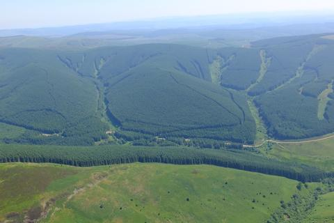 Land for sale - Kirk Hill Forest, Near Moffat, Dumfries and Galloway DG10