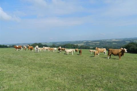 Land for sale - Bridestowe, Okehampton, Devon, EX20