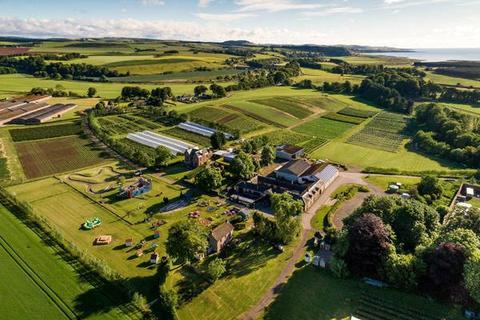 Farm for sale - Charleton Fruit Farm, Charleton, Montrose, Angus, DD10