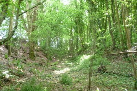 Land for sale - Brigham Quarry Wood, near Cockermouth, Cumbria CA13