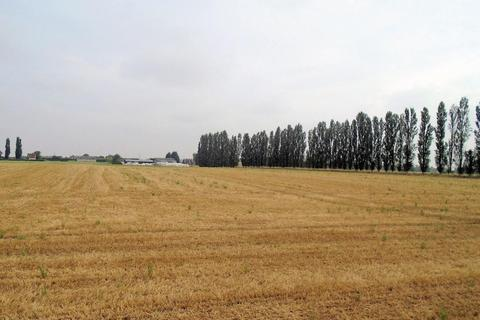 Land for sale - Turnham Lane, Cliffe, Selby