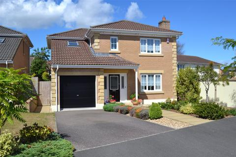 4 bedroom detached house - Meadow Brook, Roundswell