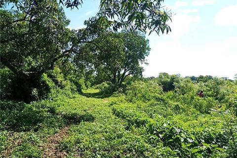 Land - Malindi