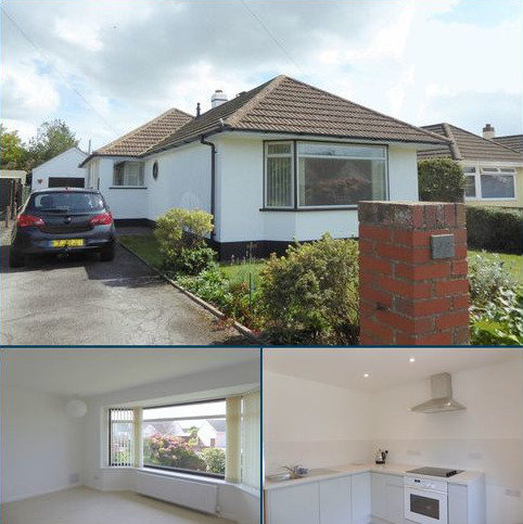 3 bedroom detached bungalow to rent - Meadowcroft Drive, Newton Abbot