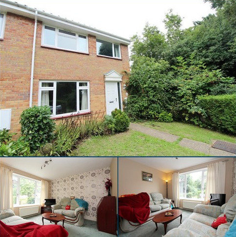 3 bedroom end of terrace house for sale - Calamint Road, Witham, Essex, CM8