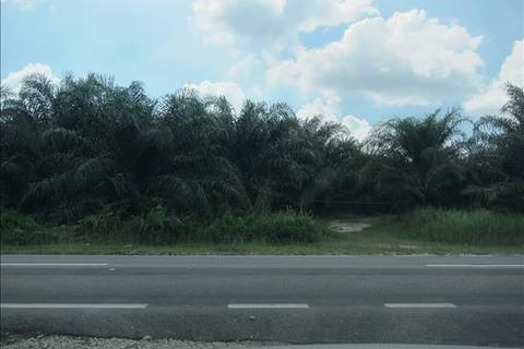 Land  - Penang, Malaysia