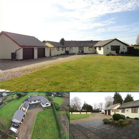 3 bedroom detached bungalow for sale - Hadleigh Road, Boxford