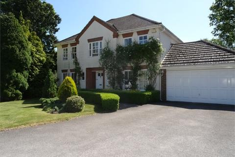 5 bedroom detached house to rent - Nevelle Close, Binfield, Berkshire