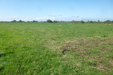 Land for sale - Duck Pool Drove, Glastonbury