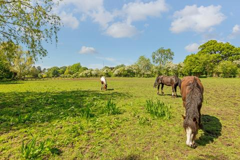 4 bedroom equestrian facility for sale - High Street, Barkway, Royston
