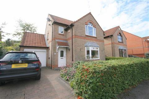 3 bedroom detached house for sale - Appleby Park, North Shields, NE29
