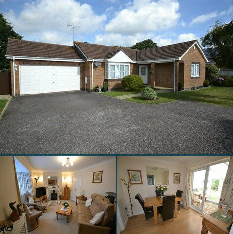 3 bedroom detached bungalow for sale - THORNE FARM WAY, OTTERY ST MARY