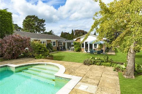 4 bedroom bungalow for sale - Dye House Road, Thursley, Godalming, Surrey, GU8