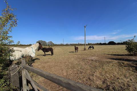 5 bedroom equestrian facility for sale - Lower Burnham Road, Latchingdon, Chelmsford