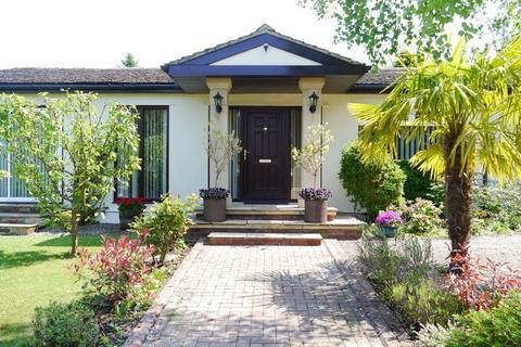 5 bedroom detached bungalow for sale - Hawthorn Way, Darras Hall