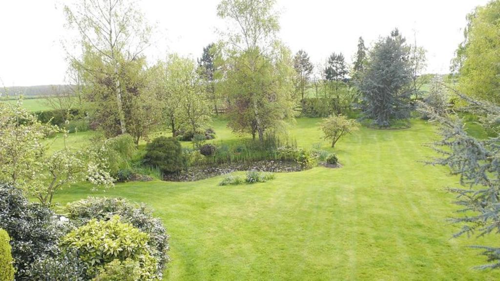 Pond area, garden