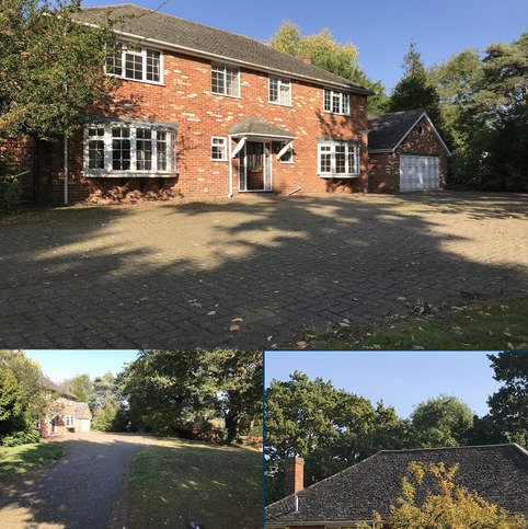 5 bedroom house to rent - Main Road, Broomfield, Chelmsford, Essex CM1
