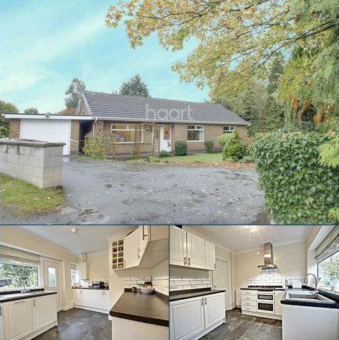 3 bedroom bungalow for sale - Stanton Road, Sandiacre