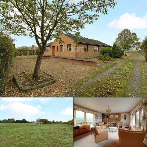 3 bedroom bungalow for sale - Allington Lane, Foston