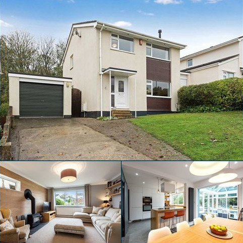 4 bedroom detached house for sale - Broadpark Road, Torquay, TQ2