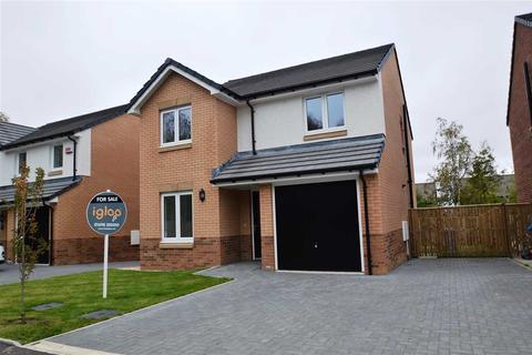 4 bedroom detached house for sale - Ballantyne Drive, Hamilton