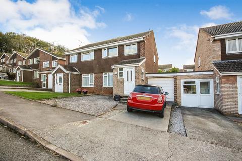 3 bedroom semi-detached house for sale - Wyre Close, Paignton, TQ4