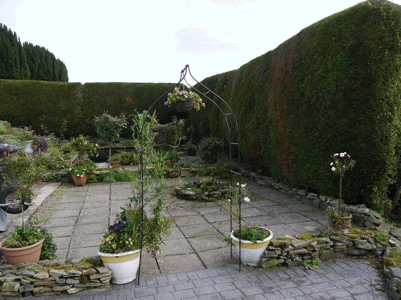 Patio and path