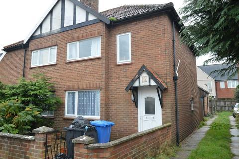 4 bedroom semi-detached house for sale - Armes Street, Norwich