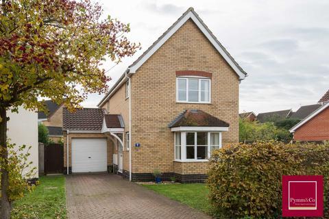 3 bedroom detached house for sale - Pym Close, Dussindale