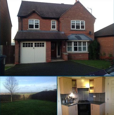 4 bedroom detached house to rent - Radleigh Grange DE11