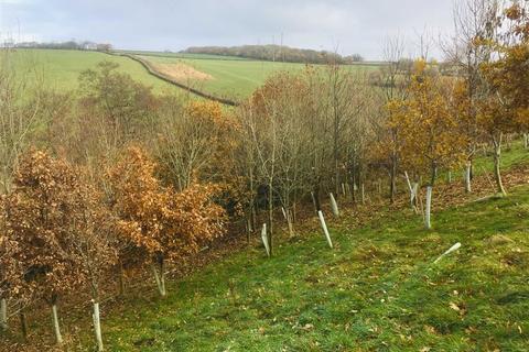 Land for sale - Tawstock, Tawstock, Barnstaple, Devon, EX31