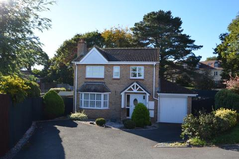 3 bedroom detached house for sale - Carhaix Way, Dawlish