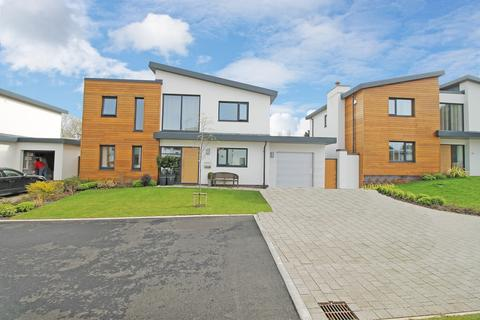 4 bedroom detached house to rent - Holland Park , Exeter
