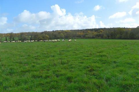 Land for sale - Highampton, Beaworthy, Devon, EX21